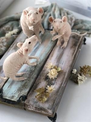 Мышка - фото 4710
